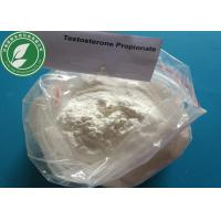 Wholesale USP Standard Steroid Powder Testosterone Propionate For Fat Loss CAS 57-85-2 from china suppliers
