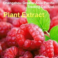 Wholesale Natural Bilberry Extract Rasberry Extract Anthocyanidins from china suppliers