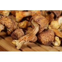 Wholesale Organic Agaricus blazei Murrill extract polysaccharides from china suppliers