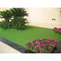 2200dtex 10mm natural appearance indoor artificial grass for Artificial grass indoor decoration
