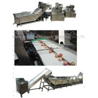China Stainless Steel 304 Dried Fruit Processing Equipment ISO9001 Certification on sale