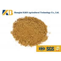 Wholesale Natural Fish Meal Fertiliser Improve Animal Disease Resistance Ability from china suppliers