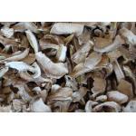 China 2015 Dried Boletus Edulis slice for sale