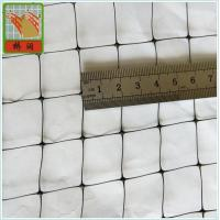 Wholesale Plastic Fence Netting/ B.O.P Netting/ Mesh Size 2cm*2cm/ PP/ Black from china suppliers