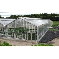 Wholesale UP Ventilation Muti Span Sunshade PC Sheet Greenhouse from china suppliers