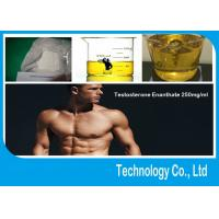 Wholesale Testosterone Enanthate Pure Testosterone Steroid 250mg/Ml Primoteston Depot from china suppliers