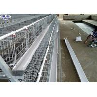 Wholesale Custom Battery Hen Cages Nipple Drinking System Adjustable Foot Plates from china suppliers