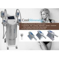 Wholesale Cryo Therapy Fat Freezing Equipment , Cool Lipo Machine That Freezes Fat Cells from china suppliers