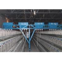Wholesale Automatic Poultry Farming Equipment System for Chicken from china suppliers