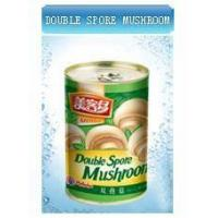 China Canned Mushrooms on sale