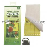 Wholesale Aphid Glue Trap from china suppliers