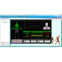 China Free Updated Software Quantum Resonance Magnetic Analyser Clinic Home on sale
