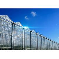 Wholesale Hollow Glass Style Agricultural Greenhouse With Hot Galvanized Steel Frame from china suppliers