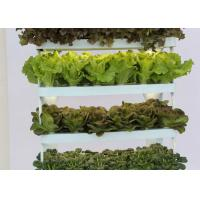 Wholesale Health Home Garden Smart Hydroponics System , NFT Hydroponic System With Lighting System from china suppliers