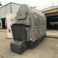 China Professional manufacturer supply coal biomass wood pellet fired steam boiler for hotel,hospital on sale