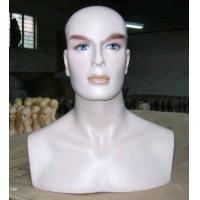 China Quality Male Mannequin Head & Bust on sale