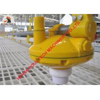 Wholesale Sudan Poultry Farm Automatic Nipple Drinker Line & Feeding Pan Line for Broiler Chicken Floor Raising in Chicken House from china suppliers