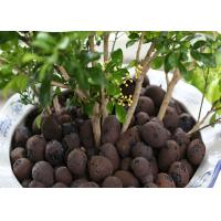 Wholesale Aquaponic Hydroponic Clay Balls Customized Size Low Energy Consumption from china suppliers