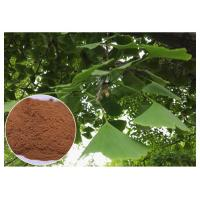 Wholesale Natural Plant Extract Prevent Cardiovascular diseases Ginkgo Biloba Leaf Extract EP Grade from china suppliers