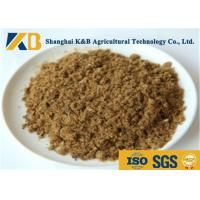 Wholesale GMP Pure Natural Fish Meal Powder / Animal Feed Additives 65% Protein Content from china suppliers