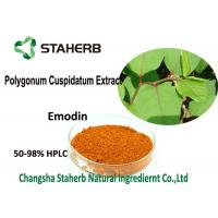 Wholesale 98% Emodin Powder Pure Natural Plant Extracts , Polygonum Cuspidatum Root Extract from china suppliers