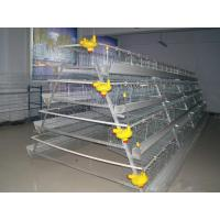Wholesale Poultry Cage for Layer Chicken Farm from china suppliers