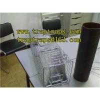 Wholesale Folding Live Animal Trap from china suppliers
