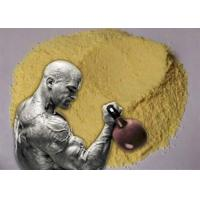 Wholesale Yellow Trenbolone Base Tren Anabolic Steroid Hormones Powder Bulking Cycle from china suppliers