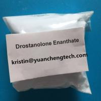 China Fat Loss and Bodybuilding Steroid Powder Drostanolone Enanthate CAS 13425-31-5 on sale