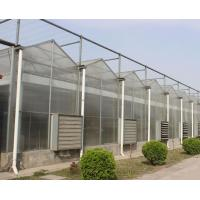 China Multi Span Polycarbonate Greenhouse on sale