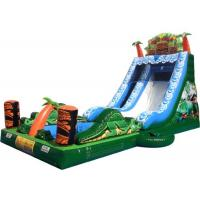 Wholesale Waterproof Plato PVC tarpaulin Tall Inflatable Water Slides Rental from china suppliers