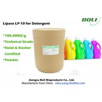 Buy cheap Detergent Enzyme Powder Technical Grade , Lipase for Detergent Application from wholesalers