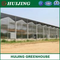China Agriculture Multi-Span Polycarbonate/PC Sheet Greenhouse Glass Greenhouse Plastic Sheet Greenhouse /Vegetable Green Hous on sale