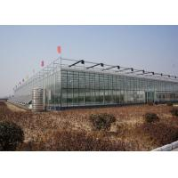 Wholesale Galvanized Pipe Double Glazed Greenhouse Good Light Transmittance Snow Resistant from china suppliers