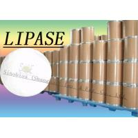 Wholesale 20000u/g Lipase Enzyme Supplement For Bread / Flour / Noodles Szym-LIP20BA from china suppliers