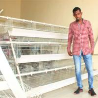 Wholesale Pakistan Poultry Farm Equipment Egg Laying Hens Battery Chicken Layer Cage Price for Sale from china suppliers