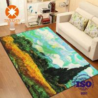 Quality Colorful Polyester Waterproof Beautiful Home Rug 50 * 80mm / 60 * 90mm / 120 * for sale