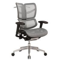 China China supplier New Product Durable Swivel Mesh Office Chair , Adjustable New Design Back Executive Ergonomic Chair on sale