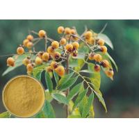 Wholesale Yellow Brown Powder Soapberry Extract Cosmetic Grade For Bath Cream / Shampoo from china suppliers