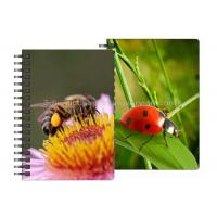 Wholesale 0.6mm PET Material 3D Lenticular Notebook For Office Stationery from china suppliers
