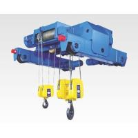 Wholesale High quality 10t NH electric hoist -Low headroom hoists from china suppliers