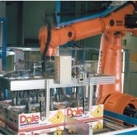 Quality Rotary Scraping Robot Palletizing Equipment For Cartons Cans Containers for sale