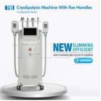 Buy cheap Cryolipolysis RF Cavitation Machine 5 Handles Treatment For Face & Body Slimming from wholesalers