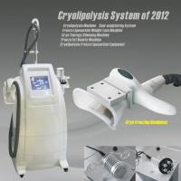 Quality New Cryolipolysis Machine (MY90) for sale