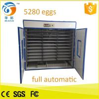 Wholesale Fully automatic egg incubator hatchery 5280 capacity chicken egg incubator hatching machine egg incubator from china suppliers