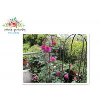 Wholesale Nursery House Garden Stake Solid Frame Flower Support Ushape Pipe from china suppliers