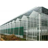 Wholesale Agricultural Polycarbonate Sheet Greenhouse Double Arch Multi Span Structure Frame from china suppliers