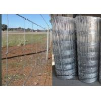 Wholesale Cattle Farming Fence / Hot-Dipped Filed Wire Mesh Fence For Poultry from china suppliers