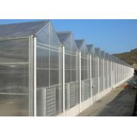 Wholesale Single Layer Toughened Glass Greenhouse , Insulating Intelligent Greenhouse from china suppliers