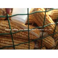 Wholesale High Tensile Strength Wire Mesh Garden Fence Panels Easily Assembled from china suppliers